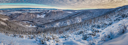Big panorama of dawn over the mountain valley in winter Stock Image