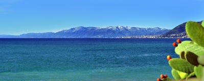 Big panoramic view of Genoa and Mediterranean Sea with cactus Stock Photos