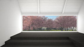 Big panoramic window with spring garden with pink flowers trees, Stock Photography