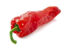 Big paprika Royalty Free Stock Photos
