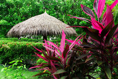 Big parasol with straw roof in tropical green garden. Big umbrella with straw roof in tropical green garden Royalty Free Stock Image