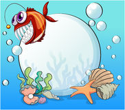 A big pearl and the smiling piranha under the sea Royalty Free Stock Image