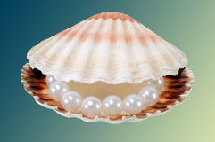 Big pearls Stock Image