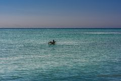 Big Pelican flies over the sea against a blue sky. Blue water color stock photography