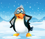 A big penguin in a snowy area Royalty Free Stock Photography