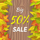 Big 50 Percent Sale Fall Banner Isolated on Wooden. Background in foliage. Final thanksgiving day sale. Autumn sale concept. Sale element. Special offer stock illustration