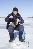 Big perch. Fisherman has caughted big perch on winter fishing Stock Image