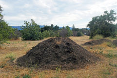 Big pie of dirt in the middle of the field Royalty Free Stock Photography