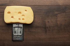 Big piece of cheese in mousetrap Royalty Free Stock Images