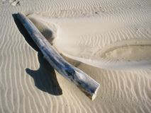 Big piece of drift wood on beach throwing a thumbs up shadow. On the wind carved sand royalty free stock photo