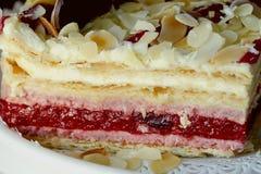 Big piece of fresh raspberry cake Royalty Free Stock Photo