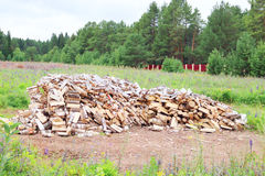Big pile of birch wood in clearing surrounded by fence Stock Photography