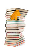 Big pile of books and autumn leaf isolated Royalty Free Stock Photography