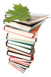 Big pile of books isolated Royalty Free Stock Photo