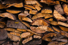 Big pile of cut tree trunks for the background. Royalty Free Stock Photography
