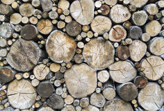 A big pile of dry sawn logs stacked on each other Stock Image