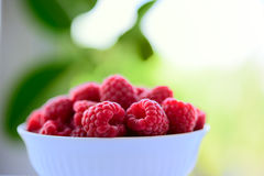 Big Pile of Fresh Raspberries in the Bowl on Green Background. Big Pile of Fresh Raspberries in the White Bowl on the Blurred Green Background Royalty Free Stock Photography