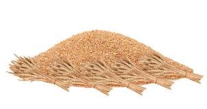Big pile of grain royalty free stock images