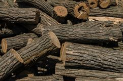 A big pile of large acacia firewood royalty free stock photos