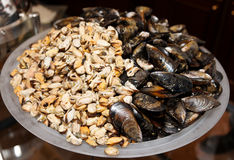 Big pile of peeled and whole mussels Royalty Free Stock Image