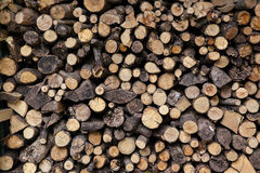 Big pile of sawn logs Stock Photography