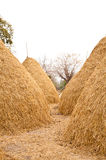 Big Pile of Straw Royalty Free Stock Photos