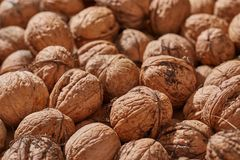 Walnuts in a pile royalty free stock images