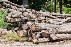 Big pile of wood Stock Image