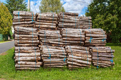 Big pile of wood logs Royalty Free Stock Photography