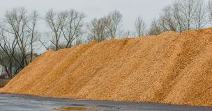 Big pile of wood shavings and wood mulch stock photography