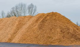 Big pile of wood shavings and wood mulch royalty free stock photography