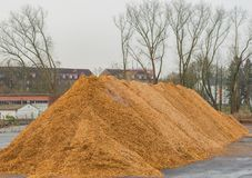 Big pile of wood shavings and wood mulch stock images