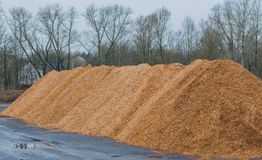Big pile of wood shavings and wood mulch royalty free stock image