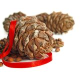 Big pine cone. Nuts, cones and red ribbon on a white background, winter still life Royalty Free Stock Images