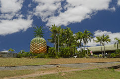 Big Pineapple near Nambour Sunshine Coast Queensland. A 16 metre high plastic pineapple with bushes at front and palm trees on the side. Vertical image with royalty free stock photography