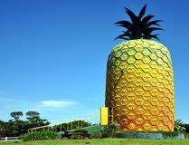 The Big Pineapple, Summer Hill Farm. This pineapple on Summer Hill farm in Bathurst, Eastern Cape Province, South Africa, is reputed to be the largest model Stock Images
