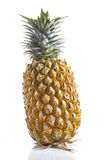 Big pineapple Royalty Free Stock Photo