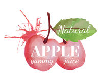 Big pink apples with leaf and splash Royalty Free Stock Photos