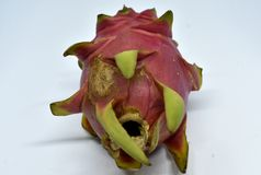 Big pink dragon fruit on white background stock images