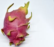 Big pink dragon fruit on white background royalty free stock photo