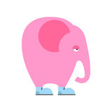 Big pink elephant in  shoes. Sad animal with trunk and big ears. Royalty Free Stock Photos