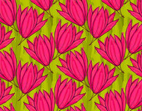 Big pink flower on green marker brushed Royalty Free Stock Photography
