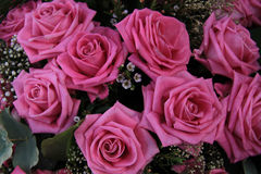 Big pink roses in a bridal bouquet Stock Photo