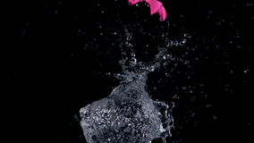 Big pink water balloon exploding stock video