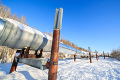 Big pipe at alaska, fairbanks Royalty Free Stock Photos