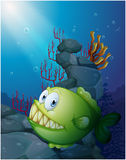 A big piranha under the sea near the rocks. Illustration of a big piranha under the sea near the rocks on a white background Stock Photography