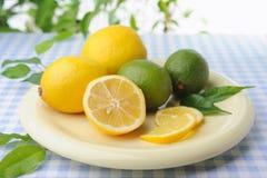 Big plate with fresh lime and lemon being make lemonade Stock Images
