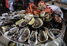 Big plate of seafood Royalty Free Stock Image