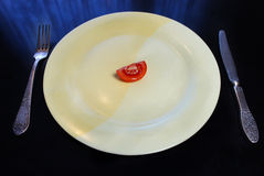 Big plate with a small piece of food Royalty Free Stock Image