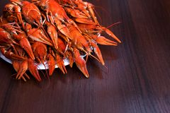 Big plate of tasty boiled crawfish closeup on wooden table, seafood dinner, nobody. Lots of red boiled crayfish, seafood dinner, nobody royalty free stock image